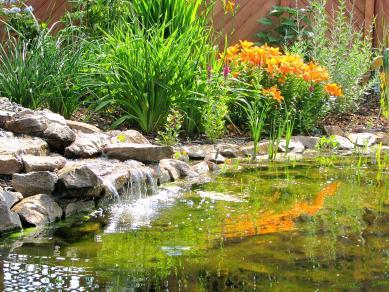 Wasserfall - Gartengestaltung Frank Klemt