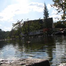 Schwimmteich bauen - Natur
