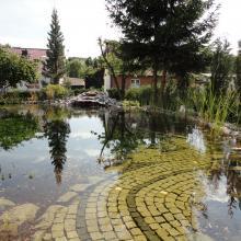 Teichbau Schwimmteich
