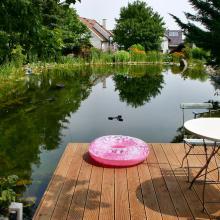 Schwimmteich für Garten