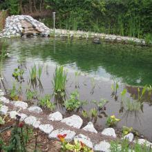 Schwimmteich mit Wasserfall - Natur