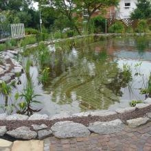 Schwimmteich Gartenteich
