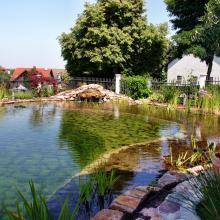 Teichbau Schwimmteich mit Wasserfall